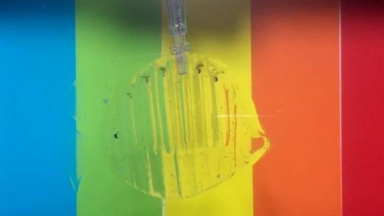 Το σχεδόν αόρατο θαλάσσιο ρομπότ που πιάνει ψάρια (vid)