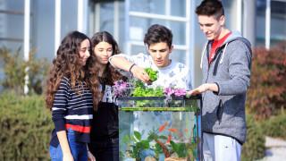 Μαθητές καλλιεργούν βιολογικά λαχανικά μέσα σε ενυδρείο χρησιμοποιώντας απόβλητα