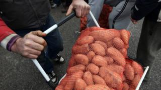 Καταγγελίες για επικίνδυνες πατάτες από την Αίγυπτο