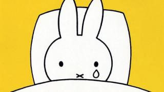 Πέθανε ο πατέρας της Miffy, Ντικ Μπρουνά