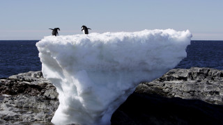 Αρνητικό ρεκόρ στα επίπεδα των πάγων σε Αρκτική και Ανταρκτική (vid)