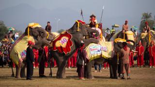 Παρέλαση ελεφάντων στους δρόμους του Λάος