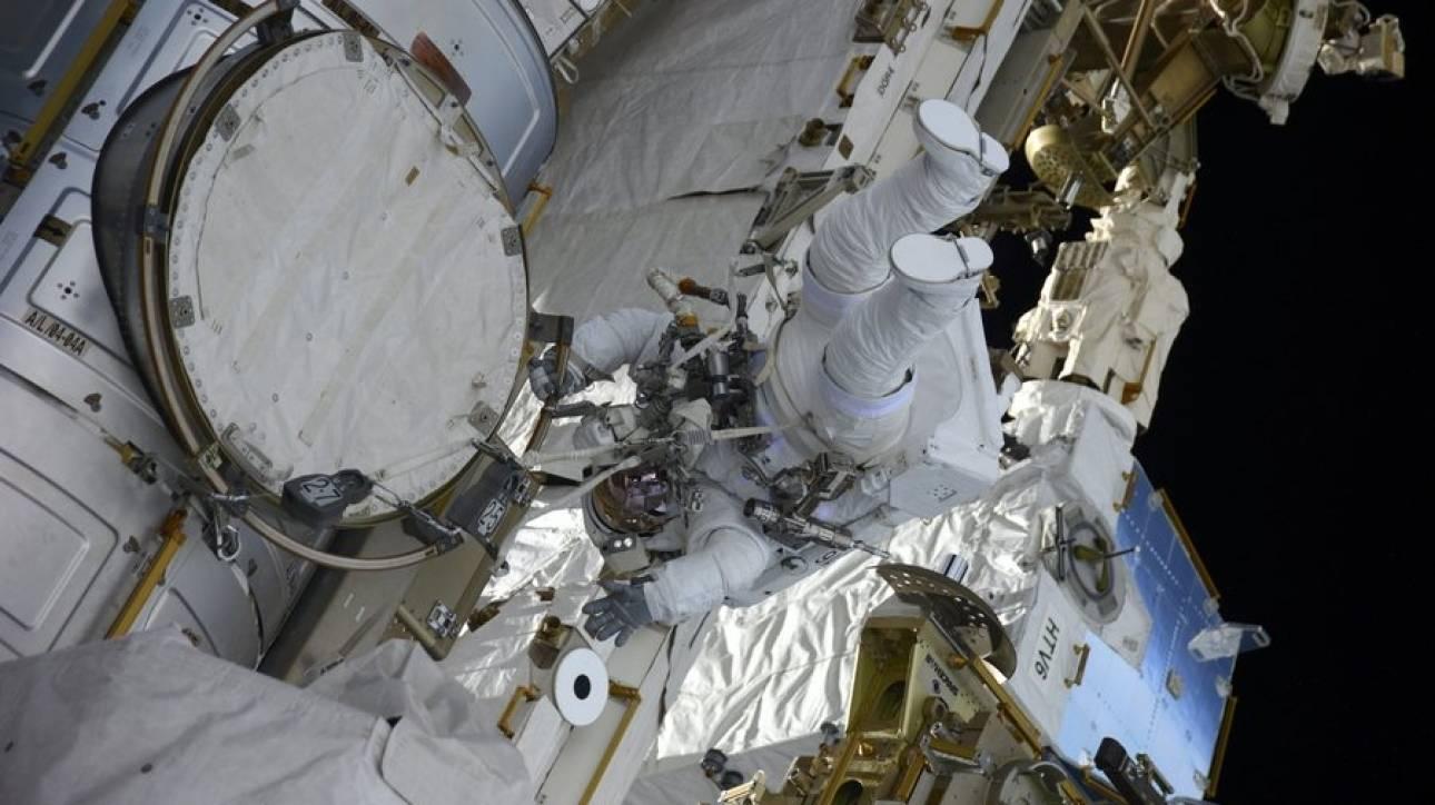 Τα φύκη που ταξίδεψαν στο διάστημα και έζησαν για να «πουν» την ιστορία