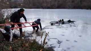 Έβγαζαν σέλφι σε παγωμένη λίμνη όταν έσπασε ο πάγος
