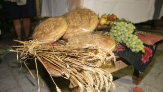 Αδιανόητο το κόστος μιας φραντζόλας ψωμιού για το περιβάλλον