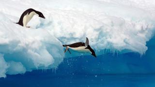 Ανταρκτική: Ταξίδι στη σιωπή της πιο ανεμοδαρμένης ηπείρου της γης (vid)