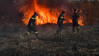 Αργολίδα: Πυρκαγιά στο βάλτο Νέας Κίου - Κινδύνεψαν σπίτια (pics&vid)