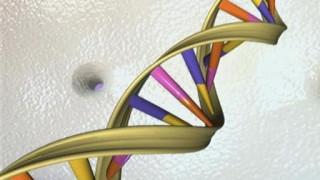 Ο «σκληρός δίσκος» του μέλλοντος θα είναι το… DNA