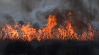 Αυξάνεται ο κίνδυνος δασικών πυρκαγιών στη Μεσόγειο