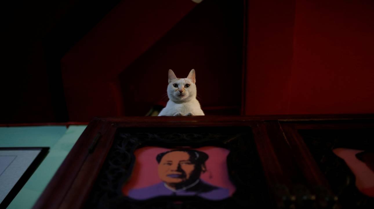 Το απαγορευμένο πορτρέτο του Mάο από τον Άντι Ουόρχολ στο σφυρί