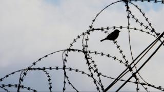 Σε χώρο πρασίνου μετατρέπονται οι δύο πτέρυγες των γυναικείων φυλακών Κορυδαλλού
