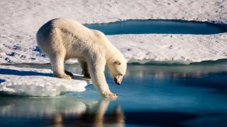 Σε χαμηλά επίπεδα ρεκόρ ο πάγος στους δύο πόλους