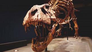 Αλλάζει οικογένεια ο T-Rex