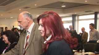 Κυβερνητικοί κύκλοι: Η παραίτηση της κ. Ράικου προκαλεί εύλογα ερωτηματικά