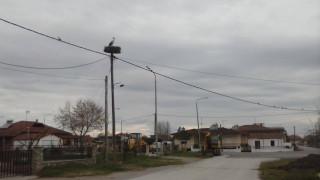 Το χωριό που λατρεύει τους πελαργούς και ο Παντελής (pics)
