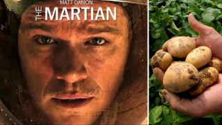 Κάν' το όπως ο Ματ Ντέιμον: Επιστήμονες καλλιέργησαν πατάτες σε συνθήκες… Άρη