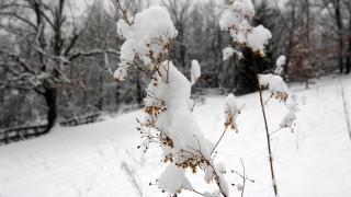 Ο καιρός τρελάθηκε - Χιονίζει τώρα στο Καρπενήσι (vid)