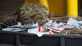 Συνελήφθησαν τρεις αλλοδαποί για καλλιέργεια και διακίνηση ναρκωτικών
