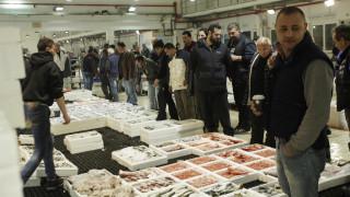 Θεσσαλονίκη: Κατασχέθηκε μεγάλη ποσότητα ψαριών στην Ιχθυόσκαλα Ν. Μηχανιώνας