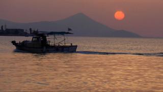 Η θαλάσσια ζωή της Μεσογείου εκπέμπει σήμα κινδύνου