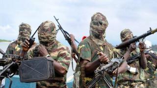 Νίγηρας: Οι δυνάμεις ασφαλείας σκότωσαν 57 μέλη της Μπόκο Χαράμ