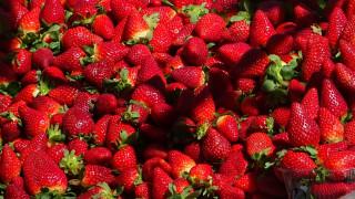 Δέσμευση 2 τόνων φράουλας χωρίς σήμανση στον Πειραιά