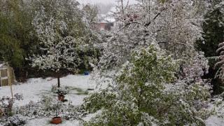 Και όμως... χιονίζει στην Γερμανία (pics&vids)