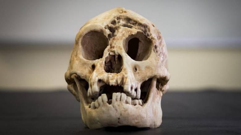 Νέες επιστημονικές εκτιμήσεις για την προέλευση του Χόμπιτ