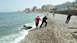 Ψάρεψαν καρχαρία επτά μέτρων και 300 κιλών στη Σκόπελο (pic)