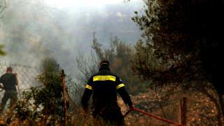 Πυρκαγιά σε δασική έκταση στα Χανιά