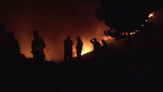 Ανεξέλεγκτη η πυρκαγιά στη Ζάκυνθο - πάνω από 600 στρέμματα έχουν καεί