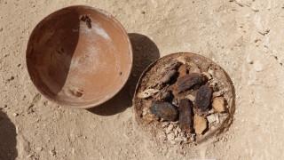 Αίγυπτος: Βρέθηκε ταφικός κήπος 4.000 ετών έξω από τάφο στο Λούξορ (pics)