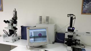 Φοιτήτρια στο Πανεπιστήμιο Πάτρων «κατάπιε» καυστικό νάτριο κατά τη διάρκεια πειράματος