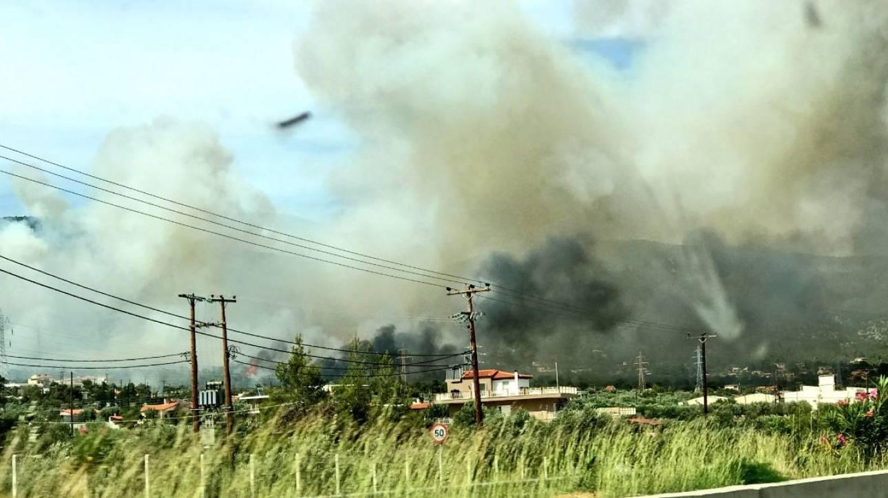 Μεγάλη πυρκαγιά κοντά σε κατοικημένη περιοχή στους Άγιους Θεοδώρους