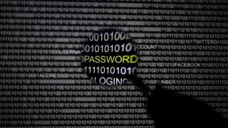 Europol για κυβερνοεπιθέσεις: Η κατάσταση φαίνεται σταθερή