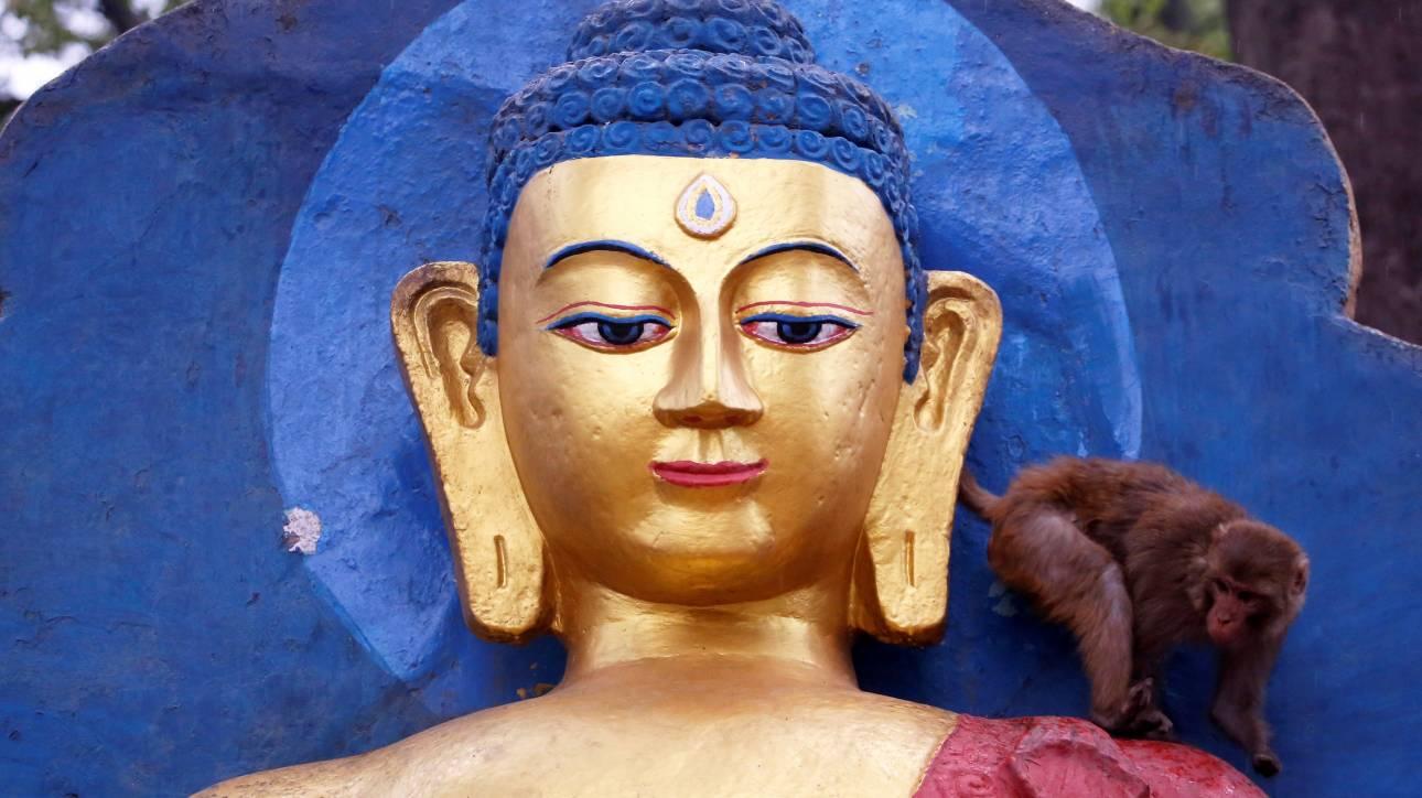 Οι πιστοί γιορτάζουν την πανσέληνο του Βούδα