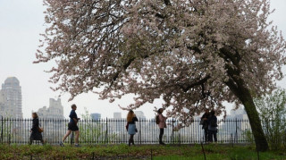 NASA: Ο δεύτερος πιο θερμός Απρίλιος στη Γη ήταν αυτός του 2017 (pics)