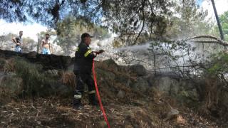 Υπό έλεγχο η πυρκαγιά στην Αργολίδα (pics)