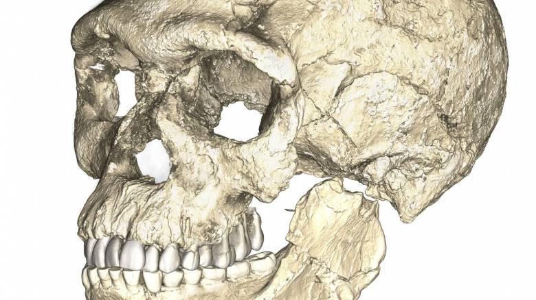 Ανακαλύφθηκαν τα αρχαιότερα απολιθώματα του Homo sapiens ηλικίας 300.000 ετών (pic&vid)