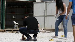 Νέα αποκάλυψη για το Μενίδι: «Αδέσποτη» σφαίρα είχε χτυπήσει στο κεφάλι μικρό κορίτσι