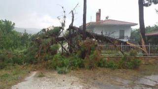 Μπουρίνι προκάλεσε καταστροφές στη Λάρισα (pics)