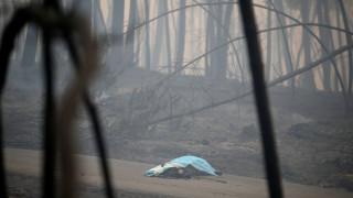 Σοκαριστικές εικόνες στην Πορτογαλία - Καμμένα πτώματα στο δρόμο