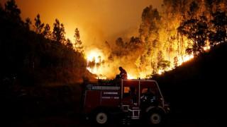 Αυτές είναι οι φονικότερες δασικές πυρκαγιές στον κόσμο - Και η Ελλάδα στον κατάλογο (vids)