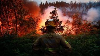 Πορτογαλία: Μαίνονται οι φλόγες - 1.000 πυροσβέστες και ευρωπαϊκές ενισχύσεις στην κατάσβεση
