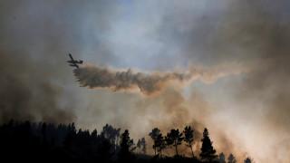 Μαίνεται η φωτιά στην Πορτογαλία – Στους 63 οι νεκροί