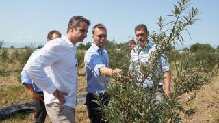 Η συνομιλία του Κ.Μητσοτάκη με αγρότες στη Θεσσαλία και οι δεσμεύσεις του (pics)
