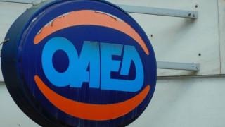 ΟΑΕΔ: Επιχορήγηση επιχειρήσεων για την απασχόληση 1.295 ανέργων, ηλικίας 25-29 ετών