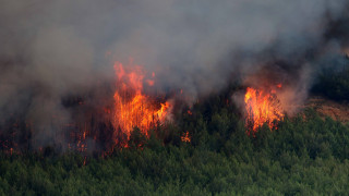 Θεσσαλονίκη: Σε επιφυλακή οι υπηρεσίες για το ενδεχόμενο πυρκαγιάς