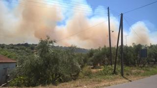 Μεγάλη φωτιά στην Κορώνη - Απειλούνται κατοικίες (pics)