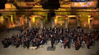 Ο αδέσποτος σκύλος που αγαπάει την κλασική μουσική (vid)